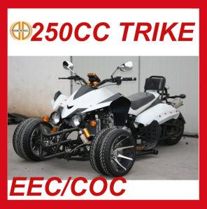 EEC 250cc Three Wheel Quad for Sale Mc-380 pictures & photos