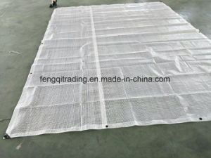 PE Leno Tarp with Reinforced Band Reinforced Scaffold Netting pictures & photos