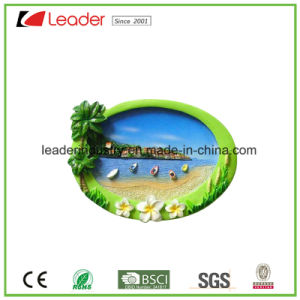 Hand Painted Resin 3D Fridge Magnet for Promotion Gifts and Souvenir Gift, OEM Are Welcome pictures & photos