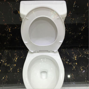 Good Price Types of Two Piece Ceramic Toilet Bowl pictures & photos