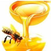 Bee Propolis, Bee Glue, Bee Propolis Extract, Purified Propolis Extract pictures & photos