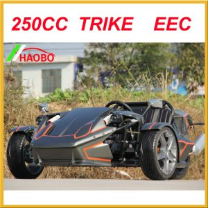 2017 Drift Trike with Windshiled and Rear Spoiler pictures & photos