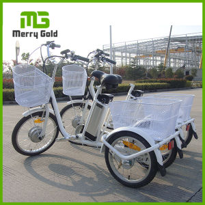 Lightweight 250W Brushless Gear Three Wheel Electric Cargo Tricycle Bike pictures & photos