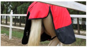 Horse Equestrian Combo Winter Horse Rug pictures & photos