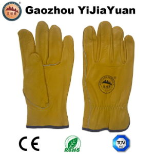 Ab Grade Cow Grain Leather Industrial Drivers Gloves pictures & photos
