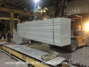 AAC Panel Lightweight Alc Panel Concrete Wall Panel pictures & photos