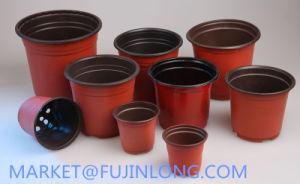 Paper Cup Plastic Cover Thermoforming Machine pictures & photos