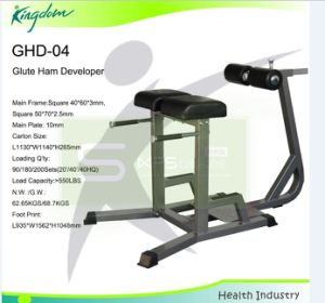 Fitness Strength Gym Equipment Bench/Glute Ham Developer pictures & photos