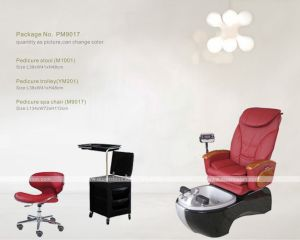 Pedicure Foot SPA Chair (M9017) pictures & photos