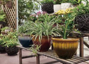 Flow Coating Decoration Flower Pot (KD9432K-KD9433K) pictures & photos