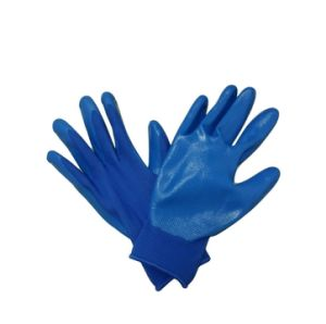 Ladies Gardening Gloves Blue Nitrile Palm Coated Work Glove pictures & photos