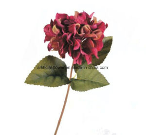 Wholesale Artificial Single Hydrangea Flowers, Hydrangea Spray, Hydrangea Stem in Pink pictures & photos