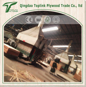 Hot Sale Commercial Plywood with High Grade Cheapest Pirce pictures & photos