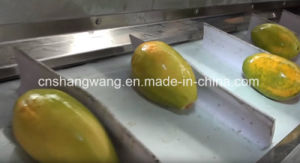 High Quality Mango Juice Production Line pictures & photos