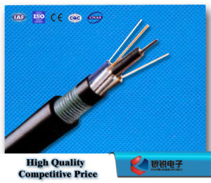 Direct Buried Outdoor Optical Cable pictures & photos