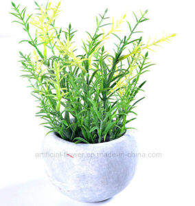 Kinds of Artificial Vivid Plants in Cement Pot for All Public Decoration pictures & photos