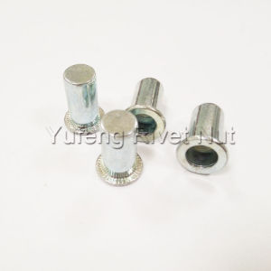 Zinc Plating Closed End Rivet Nut with Flat Head Round Body pictures & photos