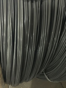Cold Heading Steel Wire SAE1010 for Making Nails pictures & photos