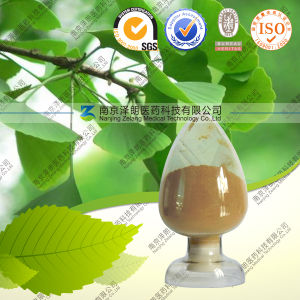 Supply Dried Ginkgo Biloba Extract Powdered Normal Ginkgo Extract 24: 6 Ginkgetin pictures & photos