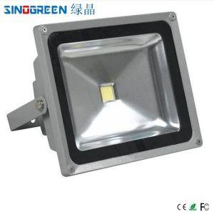 LED Flood Light (10-80W)