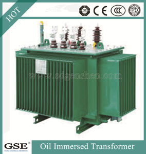 Oil Immersed Oltc Transformers Made in China pictures & photos