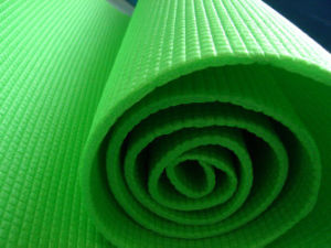PE Camping Mat/PE Mats pictures & photos