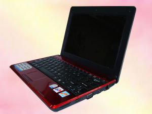Notebook (W300)