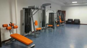 Certificated Gym80 Bodybuilding Product / Seated Calf Raise (SL37) pictures & photos