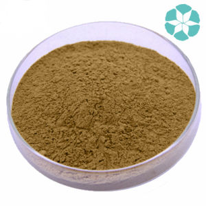 Valerian Extract / Valerian Officinalis Extract / Valerianic Acid pictures & photos
