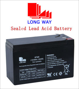 12V9ah Valve Regulated Rechargeable UPS Solar Gel Lead Acid Battery pictures & photos