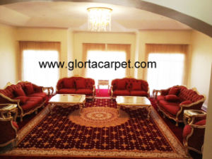 Carpet -Swaziland Queen′s Home High Quality Handtufted Carpet pictures & photos