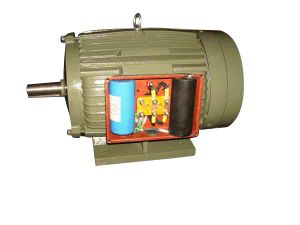 (CE) YC Single Phase Electric Motor (YC(aeef)132M-4) pictures & photos