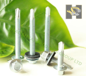 Hex Wafer Head Self Drilling Screw DIN 7504 pictures & photos