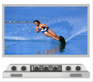 "42"" Ultra-Bright Sunlight Visible Outdoor TV pictures & photos"