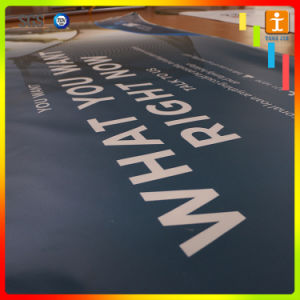 Customed Backlit Vinyl Flex Banner Street Advertising Banner pictures & photos