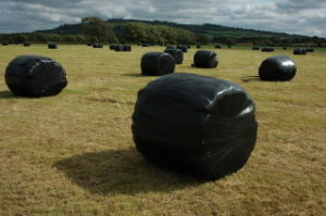 Triple Layer Blown Silage Wrap Film in Black Colour for UK pictures & photos