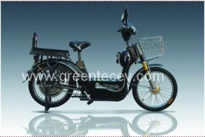 Electric Bike (V59)