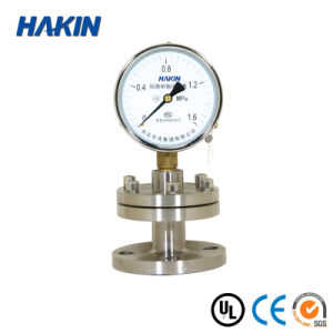 CE Certificate Stainless Steel Diaphragm Pressure Gauge (YTPF-100MG)