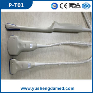 High Quality Ultrasound Scanner Transvaginal Ultrasonic Probe pictures & photos