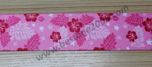 Factory High Quality Printing Webbing for Garment #1312-3 pictures & photos