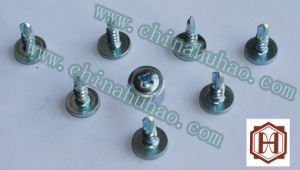 Screw/Wafer Head Zinc Coated White Color Phillips Drive Self Drilling Screw pictures & photos