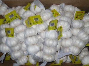 New Chinese Fresh White Garlic pictures & photos