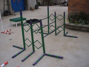 Dog Training Three Hurdles Race With Adjustable Function (GW-DT06) pictures & photos