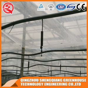 China Prefabricated Venlo Vegetable/Flower Tempered Glass Greenhouse pictures & photos