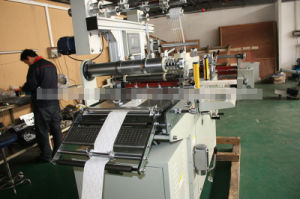 Automatic Pet/PP/Mylar Die Cutting Machine (DP-450) pictures & photos