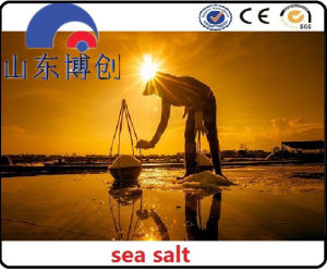 Sodium Chloride Type and Industrial Grade Grade Standard Sodium Chloride pictures & photos
