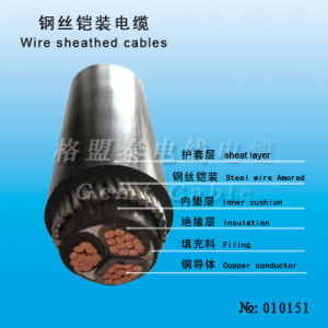Security Wire Sheathed Power Cable (010151) pictures & photos