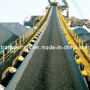 Conveyor Belt pictures & photos