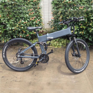 Folding Mountain Electric Bike/ Electric Bicycle/ Ebike pictures & photos