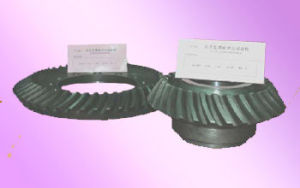 Good Quality Bevel Gear (150mm-800mm)
